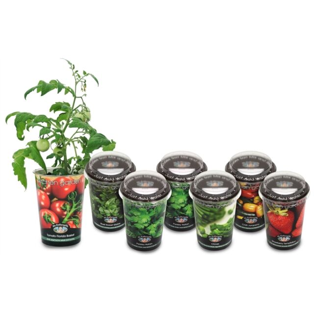 Instant Kitchen Window Sill Garden. Herbs, Vegies or Fruit ALL-IN-ONE KIT GIFT