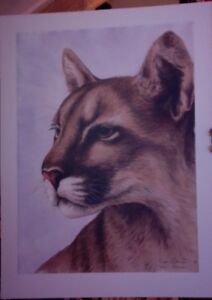 """Art Amiable Sue Coleman Limited Edition Print """"look To The Hills"""" Cougar Portrait 136/ 375"""