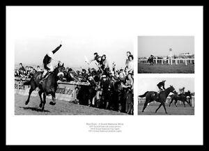 Horse-Racing-Legends-Red-Rum-3-Grand-National-Wins-Photo-Memorabilia-RRMU1
