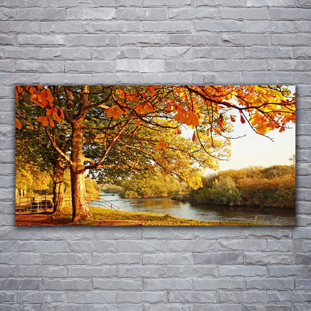 Photo sur toile Tableau Image Impression 120x60 Nature Arbre Lac