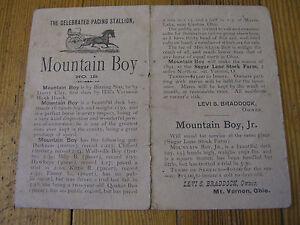 1891 RACE HORSE~PACING STALLION STUD ADVERTISEMENT~TROTTER~MOUNTAIN BOY~OHIO
