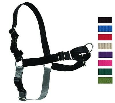 PetSafe EASY WALK HARNESS Dog No Pull - All Sizes & Colors - Front Attachment