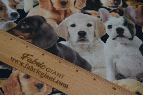 Premium Poplin 100/% Cotton Printed Puppies Fabric High Quality 150 cm wide