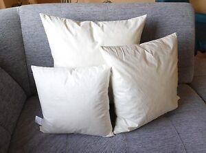 Kissenfüllung Füllkissen Kissen Inlett Federn 60x60cm