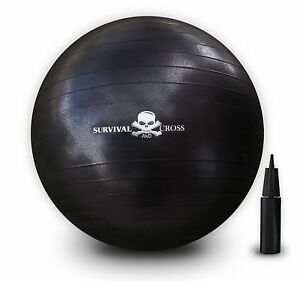 65cm-Exercise-Ball-Anti-Burst-Yoga-Ball-Gym-Pilates-Balance-Fitness-amp-Pump-Set