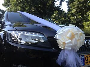 Wedding Car Decoration Kit, 1 Tulle Ribbon +6 Pull Bows Complete Set ...