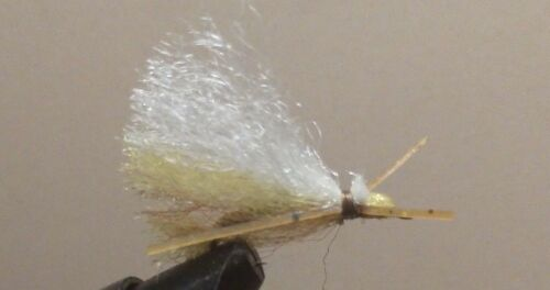 Sold Per 6 Madame X Dryfly Freshwater Size 10 Golden Yellow Hot Item