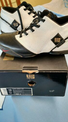 Nike Zoom LeBron V Low Remix Men SZ 12 Basketball