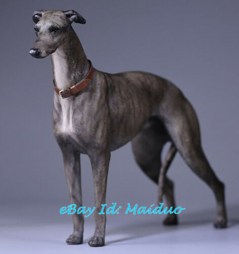 1//6 Scale Greyhound Statue GreyDog Model Resin Garage Kit Accessories 5.5/'/'H New