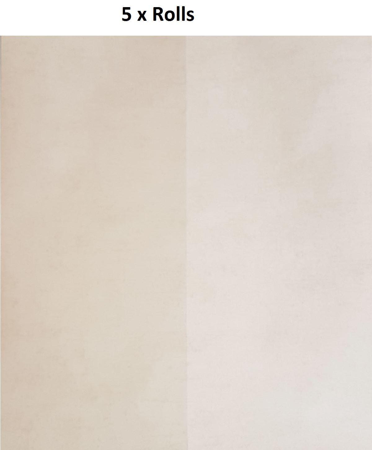 5 X Arden Beige Bold Stripe Wallpaper Two Tone Paste The Wall Holden Decor