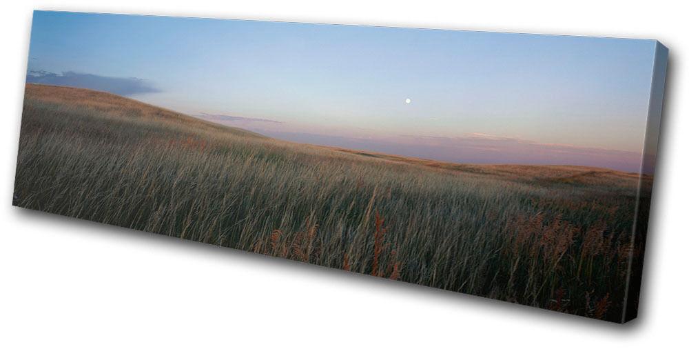Landscapes Field Moon rojo SINGLE LONA pa rojo Moon  arte Foto impresion b1bf7d