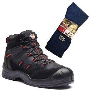 de rouges et chaussettes travail Dickies paire Bottes Everyday noires de 1 Safety SWw0vwqF