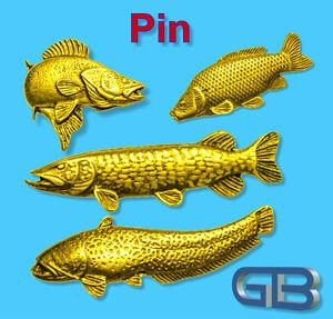 ANSTECKNADEL-PIN-Fisch-Zander-Hecht-Wels-Karpfen-aus-Zinn-Gold-Silber-Bronze