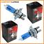 2x-H4-Ampoule-Ampoule-Vehicule-Personnel-12V-60-55W-P43t-Xenonlook-Super-Blanc miniature 1