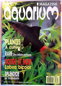 Aquarium-Magazine-n-40-Poissons-rouge-et-noir-Cultiver-Bebes-Pythons-Manda
