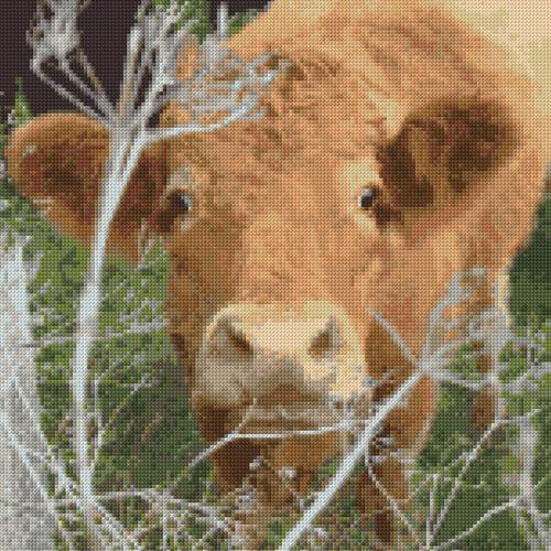 """14 COUNT Aida Anchor Cheeky Brown Cow // Calf Cross Stitch Kit 11/"""" x 11/"""""""