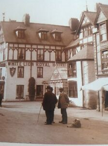 Ephemera-Book-Picture-Reprint-Bala-White-Lion-Hotel-1913-M48