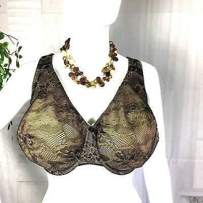 Lane Bryant Cacique 42DD Nude Bold Lace Full Coverage Bra NWT