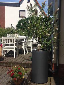 Blumentopf Aussen Rund Stahl Pulverbeschichtet Neuanfertigung Ebay