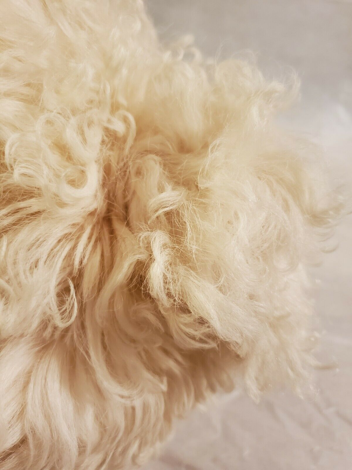 HALSTON HAT Shearling Mongolian Lamb With pompom … - image 2