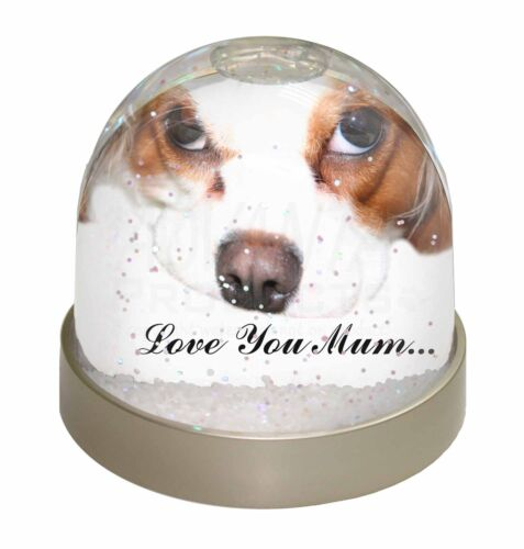 AD-SKC57lymGL Cavalier King Charles /'Love You Mum/' Photo Snow Globe Waterball S