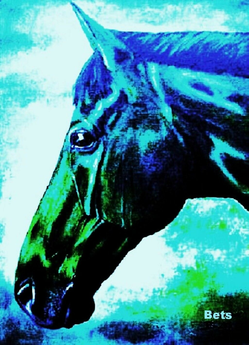 HORSE PRINT Giclee  BAY Horse PRINCETON artist BETS 7 COLORS print size 14 X 18  selling well all over the world
