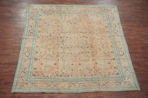 9X9-Square-Antique-Agra-Area-Rug-Hand-Knotted-Cotton-Carpet-ca-1920-7-8-x-8-8