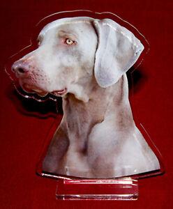 statuette-photosculptee-10x15-cm-chien-braque-de-weimar-3-dog-hund-perro-cane
