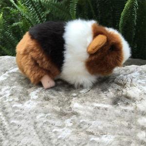 7-034-Emulational-Guinea-Pig-Plush-Toy-Cavia-Porcellus-Kids-Child-Stuffed-Doll