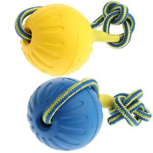 2pcs-balle-de-jouet-pour-chien-avec-corde-exercice-interactif-de-jouet
