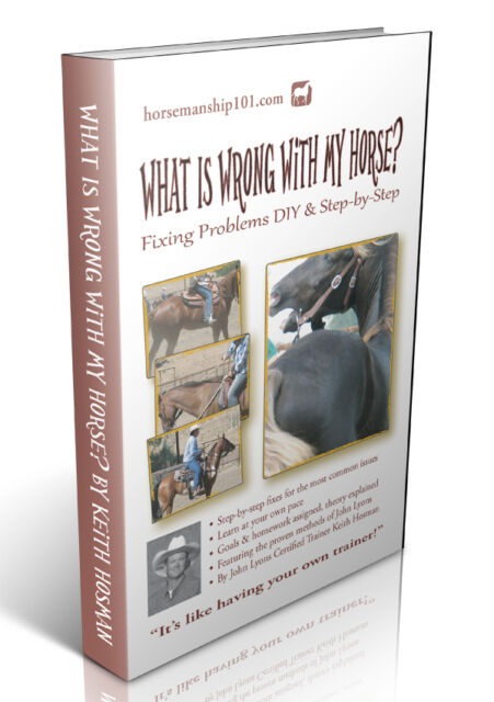 What Is Wrong with My Horse? Fixing Problems (FOR SALE BY AUTHOR OF BOOK)
