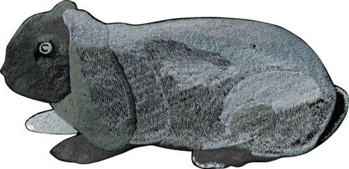 Dos-écusson grande application coudre 30 x 13 cm lapin lapin ☆ 07346 ☆