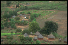 296015 A Community In Honde Valley A4 Photo Print