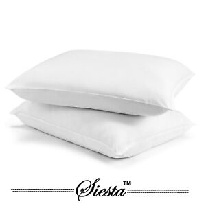 Luxury Bounce Back Hollow Fibre Filling Pillow Pair Or Cases Pack of 2 Pillows