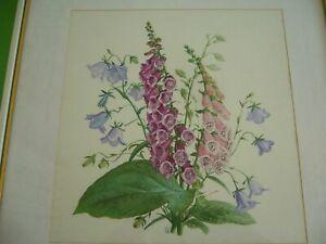Altes-Bild-gerahmt-Fingerhut-und-Glockenblume-monogrammiert