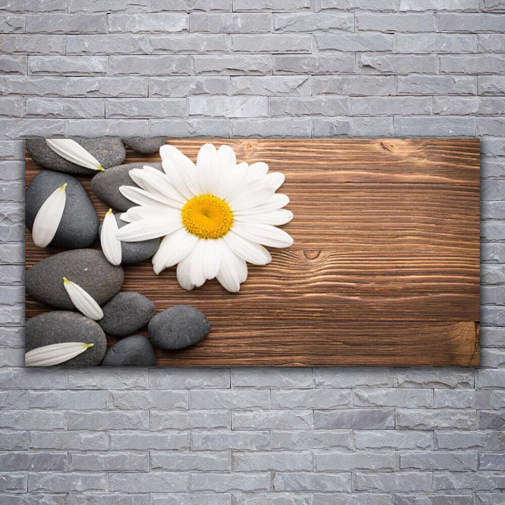 Photo sur toile Tableau Image Impression 120x60 Floral Marguerite Pierres