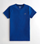 Hollister-homme-a-encolure-ras-du-cou-a-manches-courtes-Muscle-must-have-Courbe-Tee-Logo-T-Shirt miniature 14