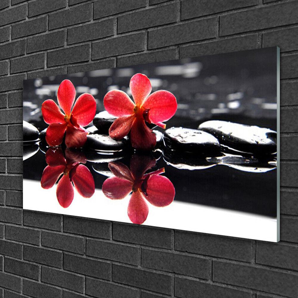 Tableau sur verre Image Impression 100x50 Floral Fleurs Pierres