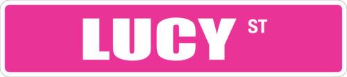 """*Aluminum* Lucy 4/"""" x 18/"""" Metal Novelty Street Sign  SS 2401"""