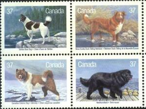 Mint stamps  Fauna Dogs  1988   from Canada  avdpz