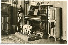 CHIEN SAVANT. DOG SCIENTIST.  CIRQUE . CIRCUS. MUSICIEN. MUSICIAN