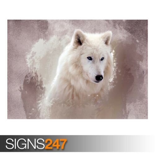 3401 Animal Poster Photo Picture Poster Print Art A0 A1 A2 A3 A4 THE WOLF