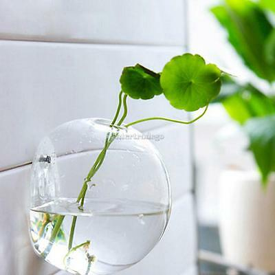 Hanging Glass Flower Planter Vase Bottle Terrarium Container Home Ball Decor
