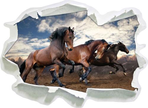 Wilde freie Pferde 3D-Look Papier Wandtattoo Aufkleber-Sticker