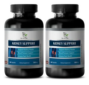 Anti-inflammatory-properties-KIDNEY-SUPPORT-COMPLEX-An-Antibacterial-Diuretic-2B