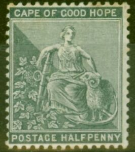 Cape-of-Good-Hope-1882-1-2d-Grey-Black-SG40a-Good-Mtd-Mint