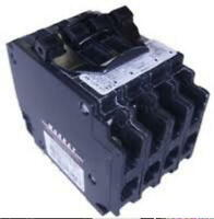 Murray Quad Breaker Brand 20/20 Amp Mp22020