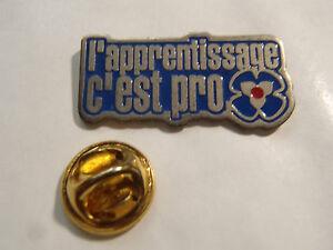 Pin's L'apprentissage C'est Du Pro Ile De France Z4bnd4zr-07230205-287604589