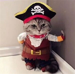 Image is loading Little-Dog-Clothes-Pirate-Captain-Doggie-Cat-Costume- & Little Dog Clothes Pirate Captain Doggie Cat Costume Pet Halloween ...