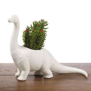 Image Is Loading Plantosaurus Planter Plant Pot Dinosaur Herb Succulents White
